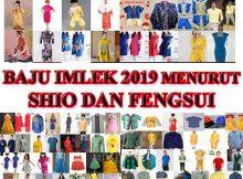 Baju imlek 2019 menurut shio dan feng shui