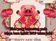 Tahun baru imlek 2019 shio apa yang beruntung