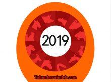 Warna Keberuntungan 2019