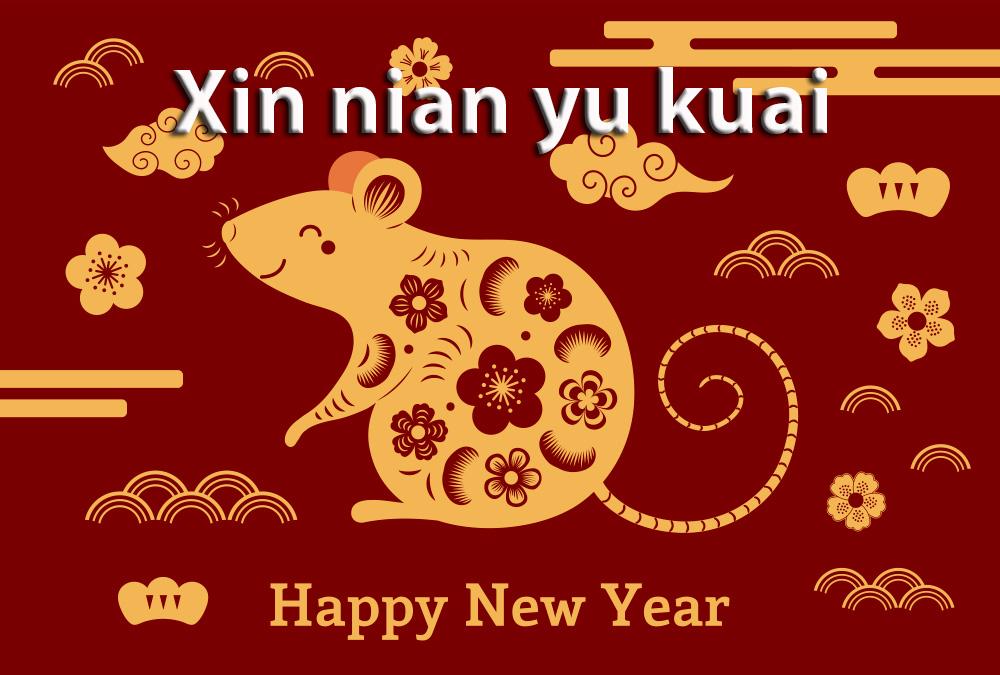Xin nian yu kuai